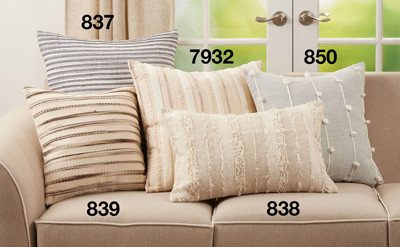 850 Knotted Line Pillow