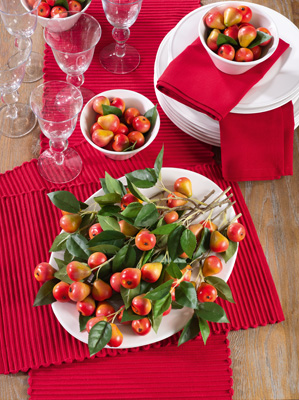 2126 ribbed placemats