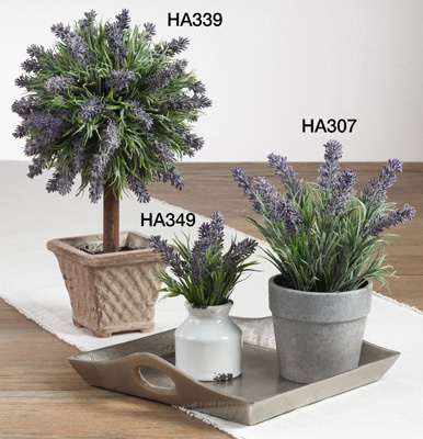 HA307 potted lavender bunch