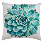 1880 succulent outdoor pillow