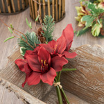 FL424 Amaryllis Pineneedle Bunch