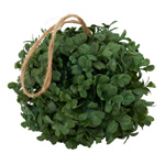 HA451 boxwood hanging ball