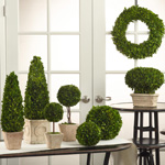 FL129 boxwood sphere