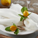 NR258 Lemon Napkin Ring