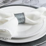 NR372 galvanized napkin ring
