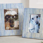PF328 blue line bone photo frame
