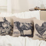 245 rooster drawing pillow